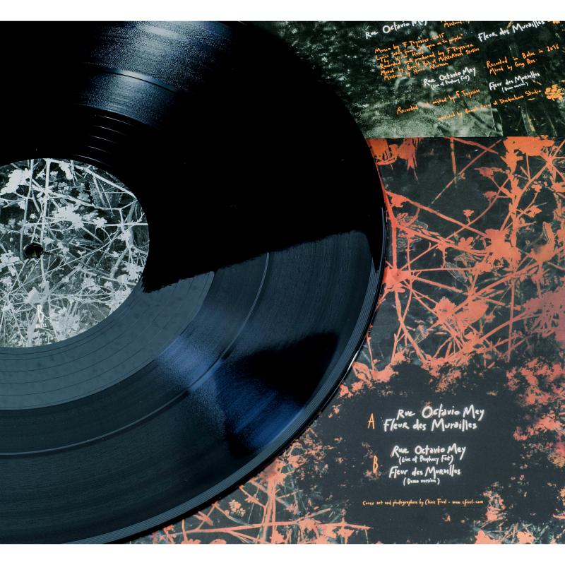 "Les Discrets - Rue Octavio Mey / Fleur des Murailles Vinyl 12"" EP"