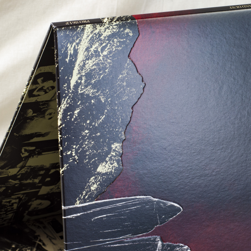 Year Of The Cobra - Ash And Dust Vinyl Gatefold LP  |  Black
